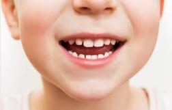 子供の歯.png